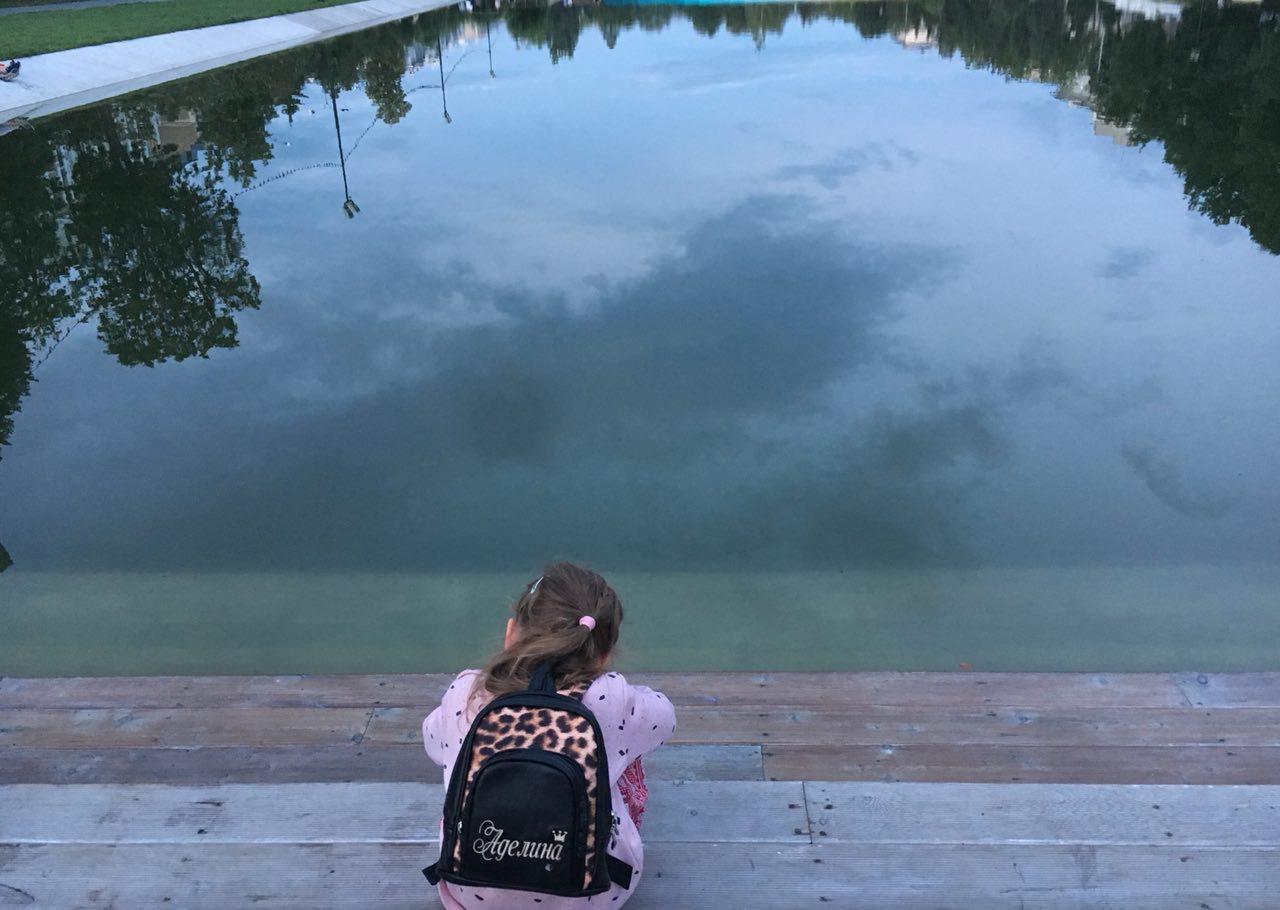 Без лебедей в парке грустно. Фото: e-Kazan.ru