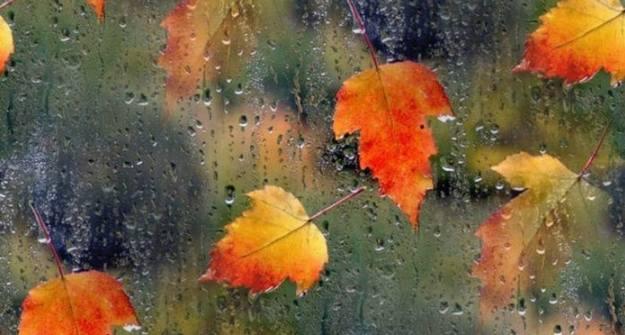 Синоптики обещают вТатарстане дожди, туман идо +19 °C