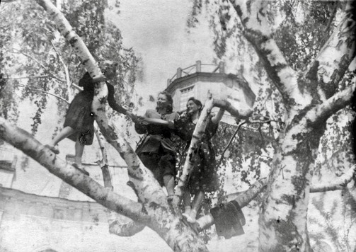 1949 год. Фото: В. Гороховский, disk.yandex.ru