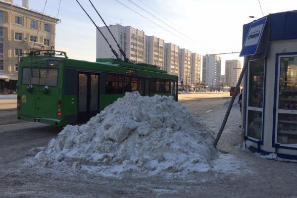 ОНФ: Казань завалило снегом, его неубирают