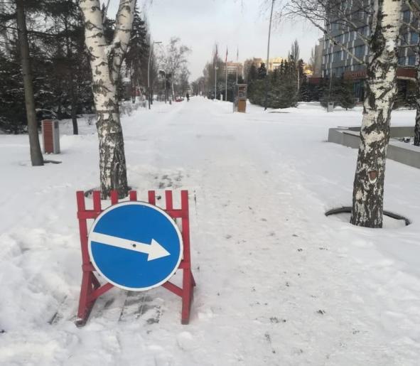 Фото: Светлана Михайлова/vk.com