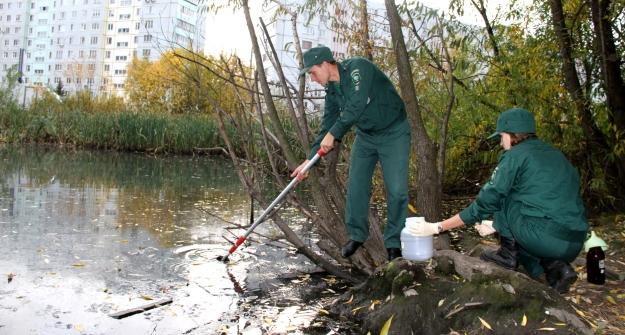 Татарстанские экологи обнаружили возере наСерова сточные воды сзапахом сероводорода