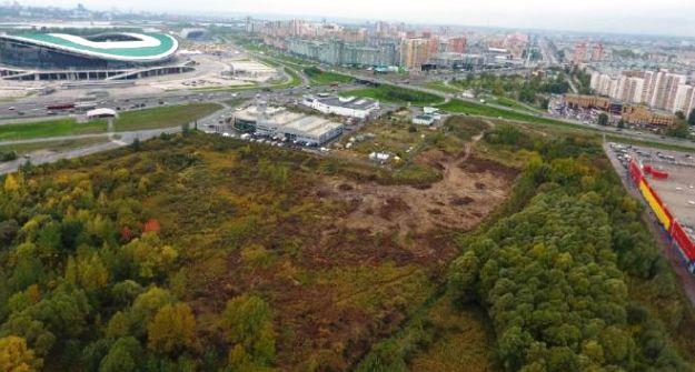 Напротив Kazan-Arena работники МиниэкологииРТ зафиксировали вырубку 600 кв. метров леса